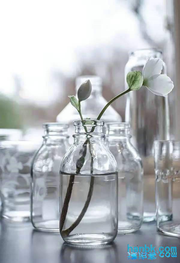 瓶子做冬天的动物