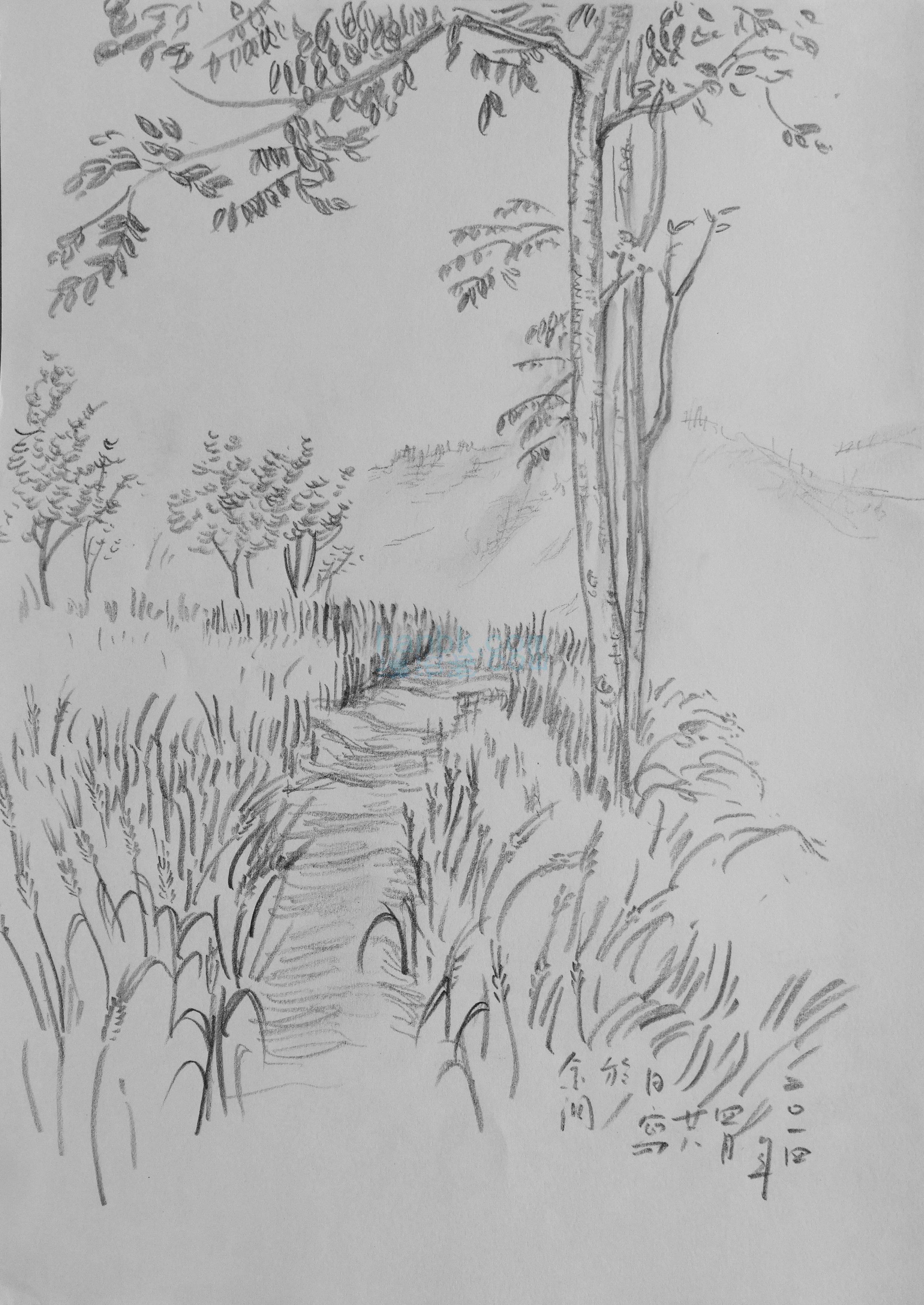 彩岸畫室2014年風景速寫高清原作——《田間小徑》